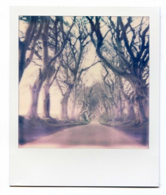 Dark Hedges, Ireland. Polaroid by Florent Dudognon