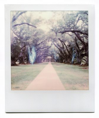 Oak Alley. Polaroid by Florent Dudognon