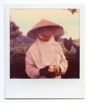 Tea harvest, Vietnam. Polaroid by Florent Dudognon
