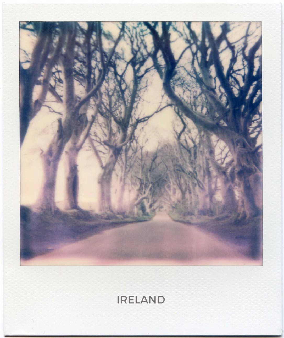Florent Dudognon ireland polaroid